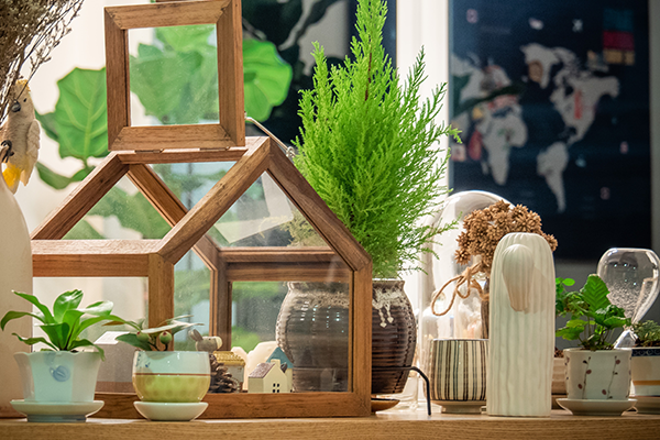 The Optimist - Tips & Tricks to Re-Style your Rented Home - Greenery, Plants and Flowers
