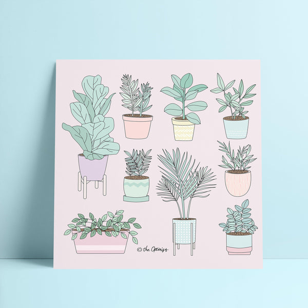 Giclée Art Print / House Plants Guide