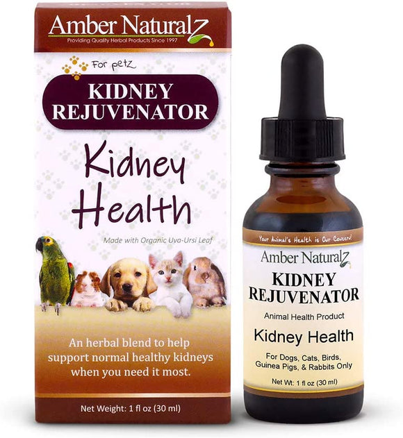 Amber Technology, Kidney Rejuvenator (1 oz. (30 ml))