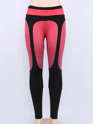 Hit Color Slim Fit Splicing Sport Pants