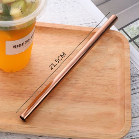 Endless Summer ONE STRAW Eco Friendly Portable, Reusable Stainless Steel Drinking Straw with Hard Case and Cleaner For Camping, Picnics, Travel B2 diameter 10MM - think-endless-summer-inc