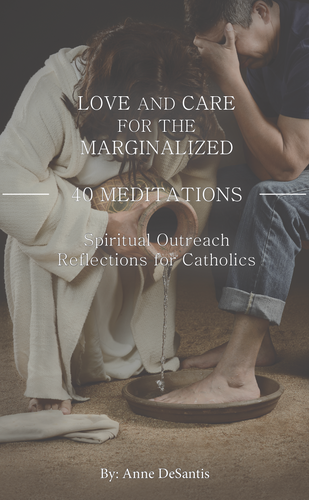 Love and Care for the Marginalized, 40 Meditations By: Anne DeSantis