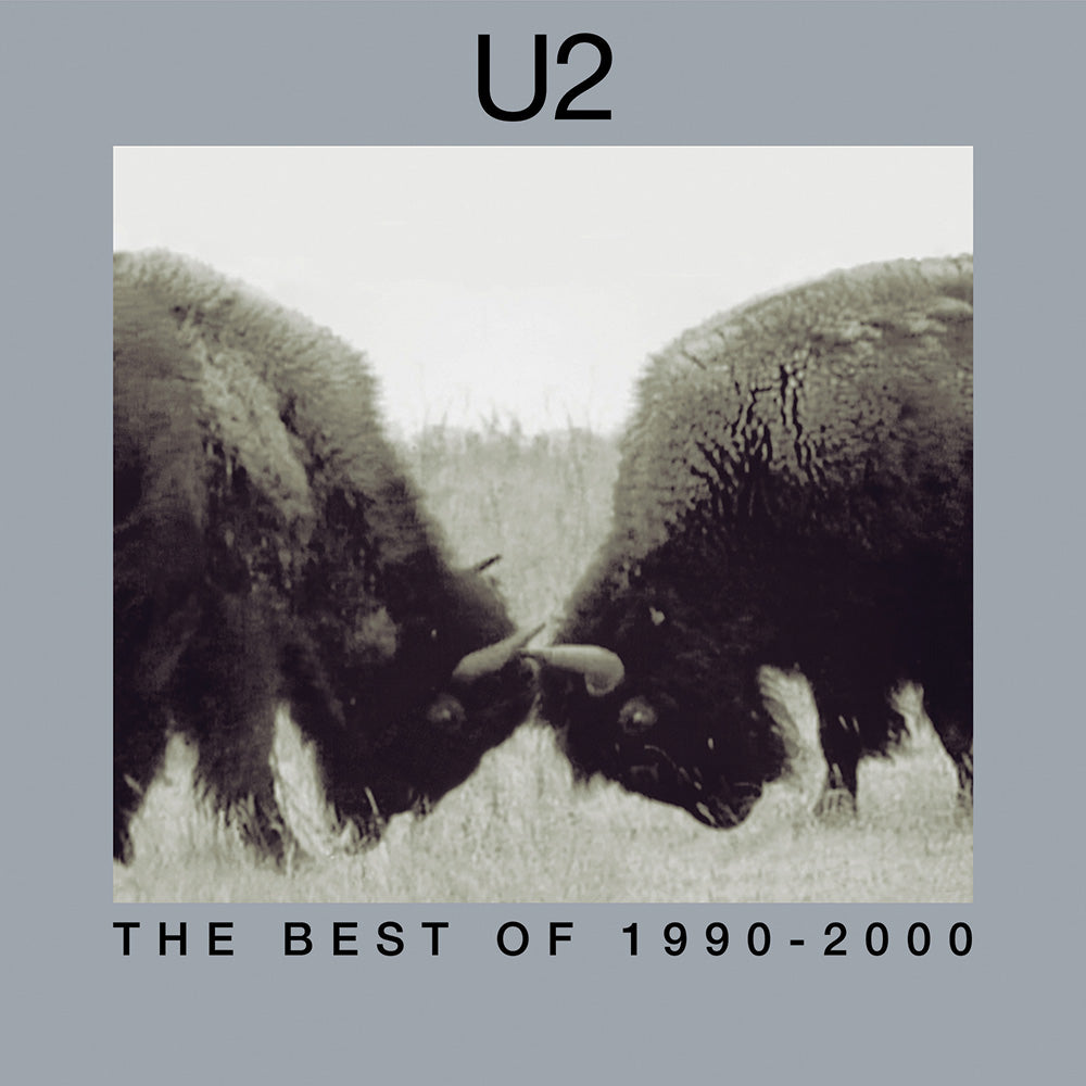 U2 The Best of 1990-2000 2LP