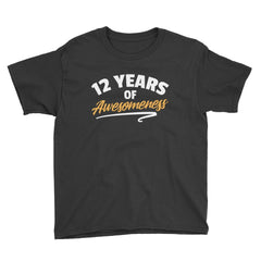 12 Years of Awesomeness Birthday T-Shirt Black / Youth XS