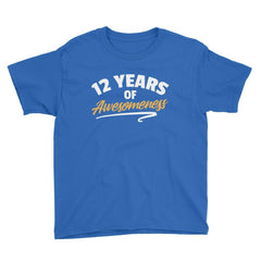 12 Years of Awesomeness Birthday T-Shirt Royal Blue / Youth XS