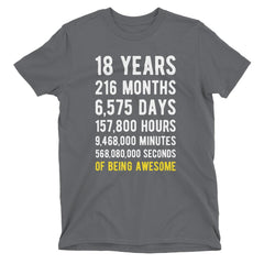 18 Years of Being Awesome Birthday T-Shirt Charcoal / Adult S