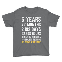 6 Years of Being Awesome Birthday T-Shirt Charcoal / Youth S
