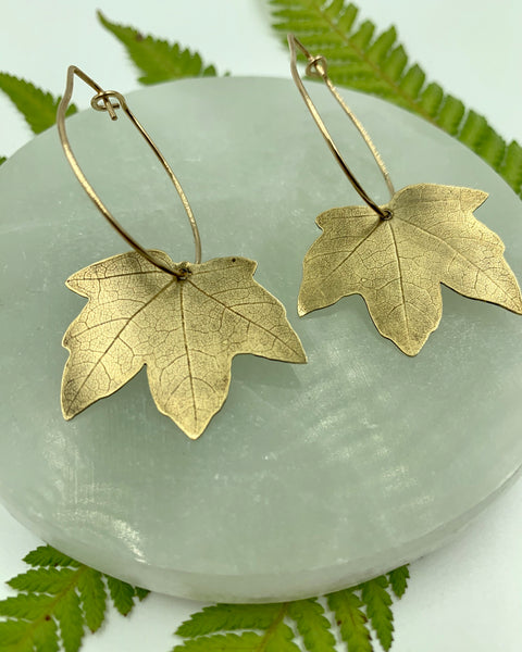 Medium Maple Hoops