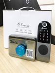 QGOGO G1 Smart Security Electronic Door Lock