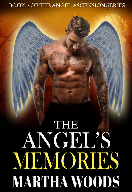 The Angel's Memories