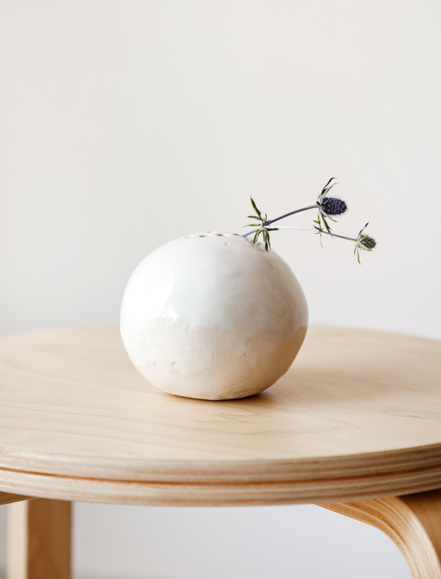 Nathalee Paolinelli Orb with Torn Plate White
