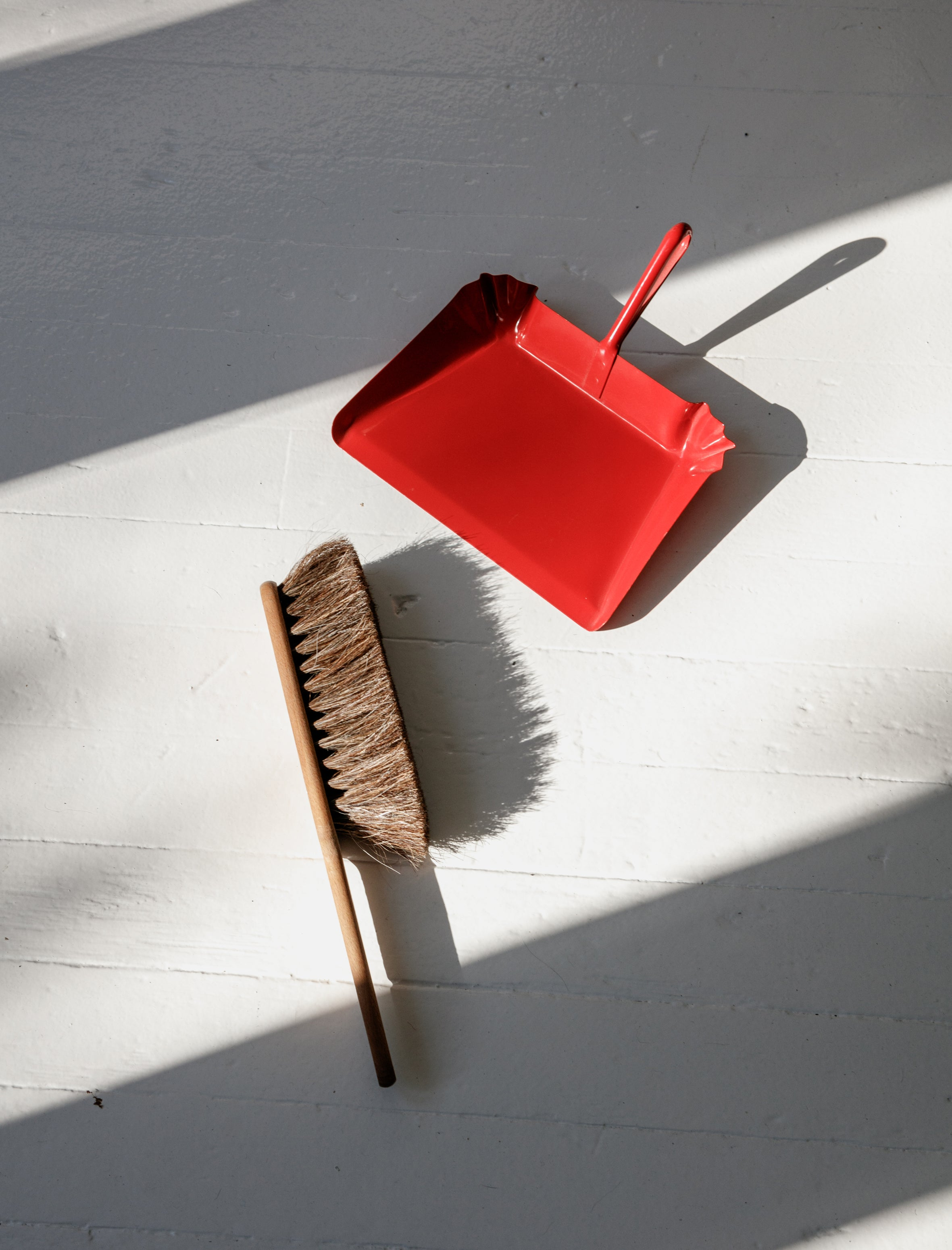Horsehair Hand Broom and Metal Dustpan