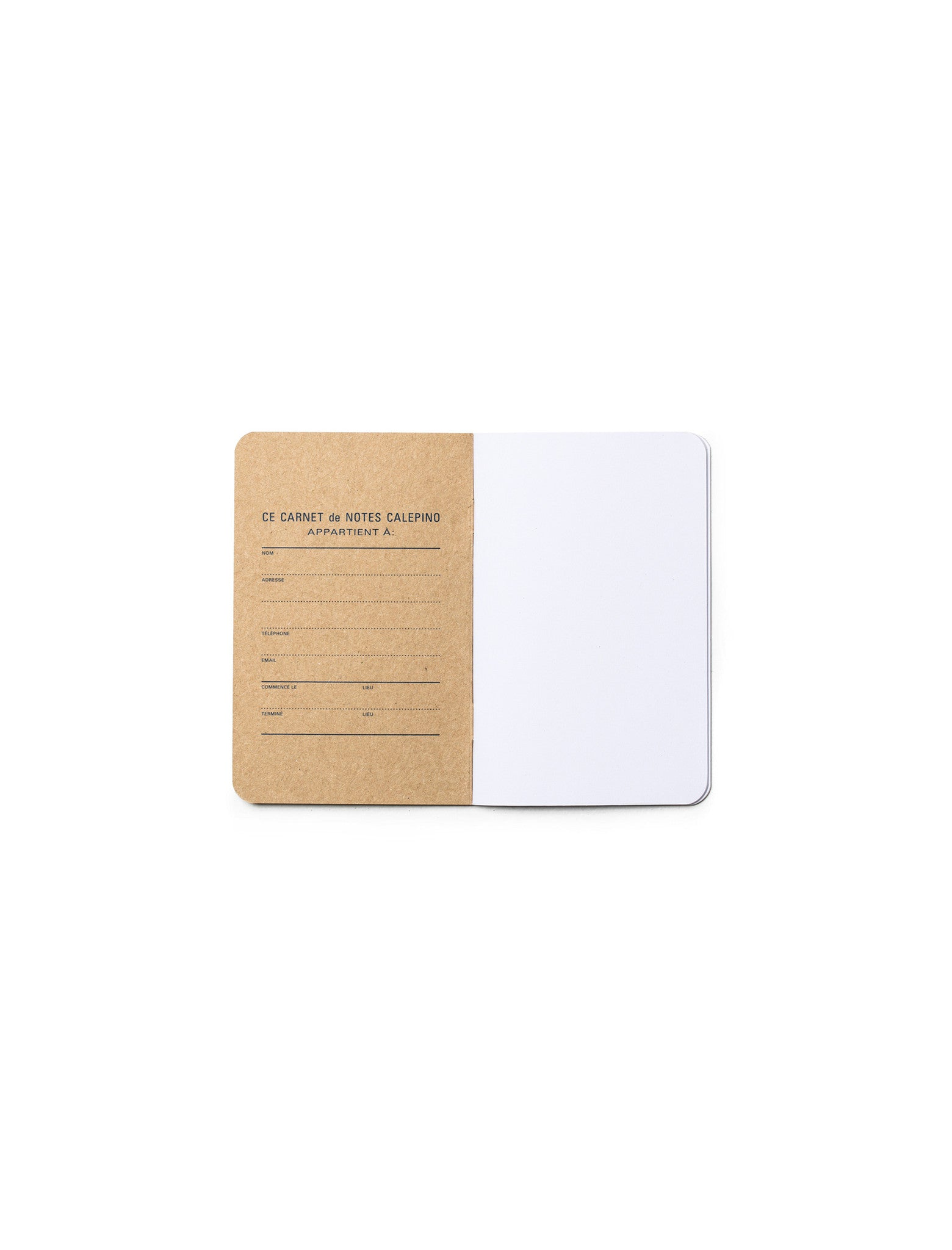 Box of 3 Memo Books - Plain Paper no. 3