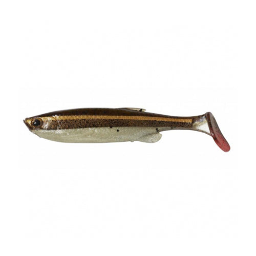 FAT T-TAIL MINNOW