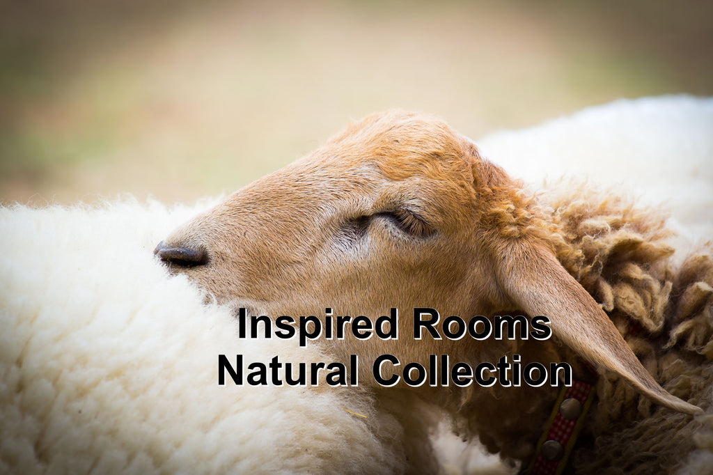 Inspired Rooms Natural Collection