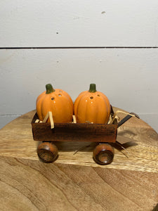 Pumpkin Salt & Pepper Shaker