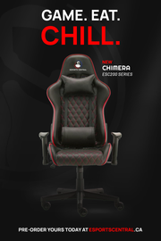 ESC200 ERGO SERIES GAMING CHAIR COUPON CODE ESC200 75$ OFF