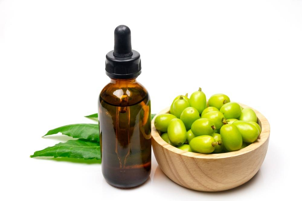 What Are the Benefits of Neem Oil?