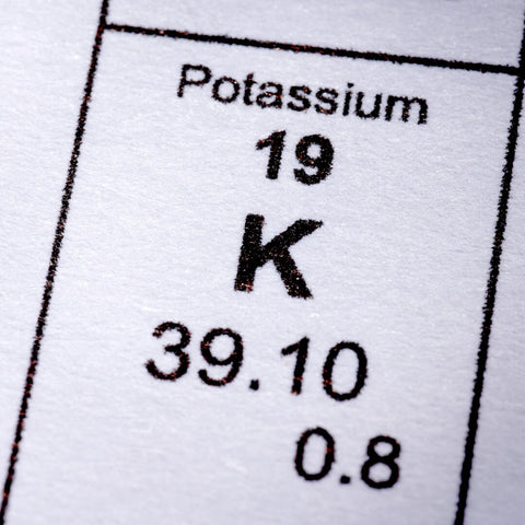 Which 7 Keto Foods are Highest in Potassium?