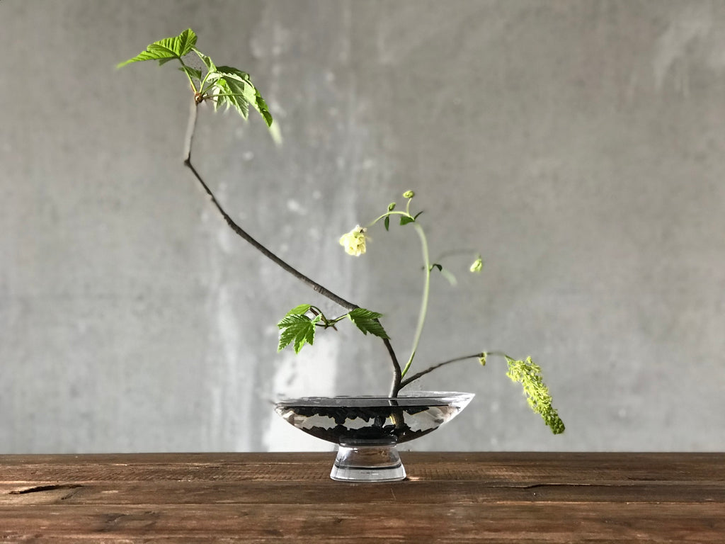 Ikebana creation by @the_ikebana_project in NUDE's Silhouette bowl