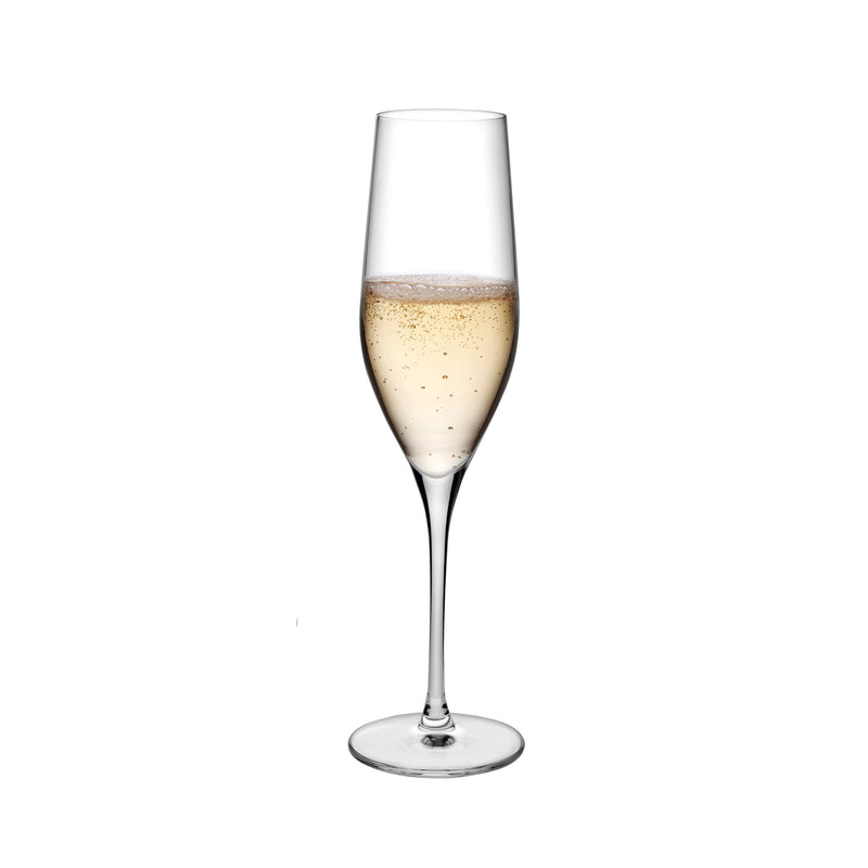 Vinifera@Set of 2 Champagne Glasses