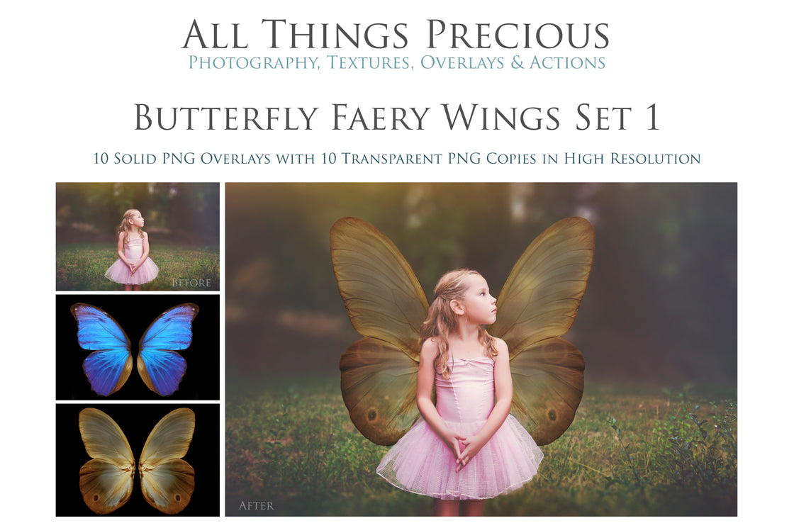 20 Png BUTTERFLY FAIRY WING Overlays Set 1