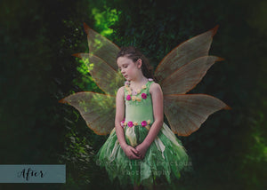 86 FAIRY WING OVERLAYS BUNDLE - Set 1