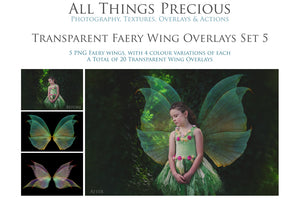 20 Png TRANSPARENT FAIRY WING Overlays Set 5