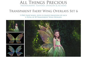 20 Png FAIRY WING Overlays Set 6
