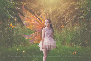 20 FAIRY WING Overlays - Gold GILDED & COLOURED - TRANSPARENT Set 5
