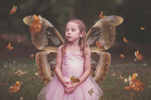 Load image into Gallery viewer, FAIRY WINGS and BUTTERFLIES Set 6