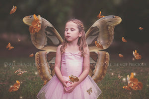 FAIRY WINGS and BUTTERFLIES Set 6