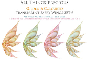 20 FAIRY WING Overlays - Gold GILDED & COLOURED - TRANSPARENT Set 6