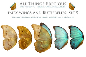 FAIRY WINGS and BUTTERFLIES Set 9
