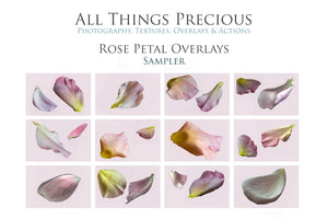 ROSE PETAL Digital Overlays
