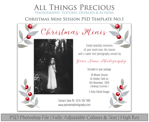 CHRISTMAS MINI SESSION - PSD Template No. 1