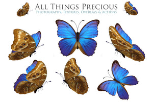 BUTTERFLIES BUNDLE No.1 Digital Overlays for Photoshop