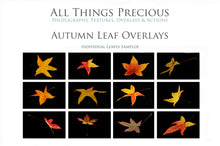 Load image into Gallery viewer, AUTUMN / FALL LEAF OVERLAYS Digital Overlays