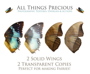 FAIRY WINGS and BUTTERFLIES Set 3