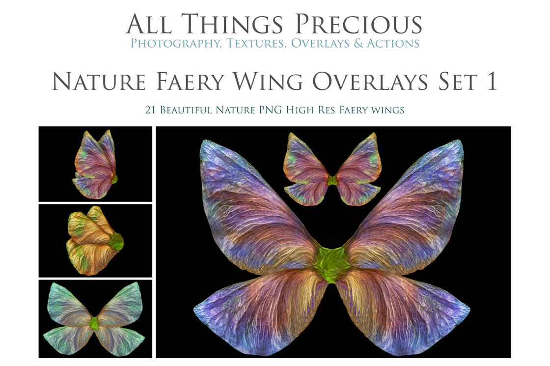 Png NATURE FAIRY WING Overlays