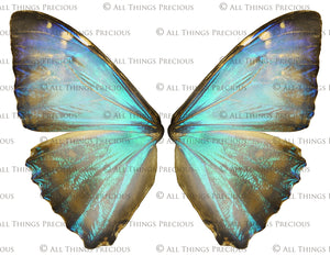 20 Png BUTTERFLY FAIRY WING Overlays Set 4