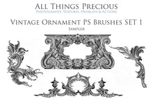 Load image into Gallery viewer, VINTAGE ORNAMENTS Set 1 - Photoshop Brushes