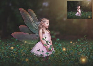 20 Png TRANSPARENT FAIRY WING Overlays Set 8
