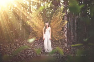 14 Png GOLDEN FAIRY WING Overlays Set 1