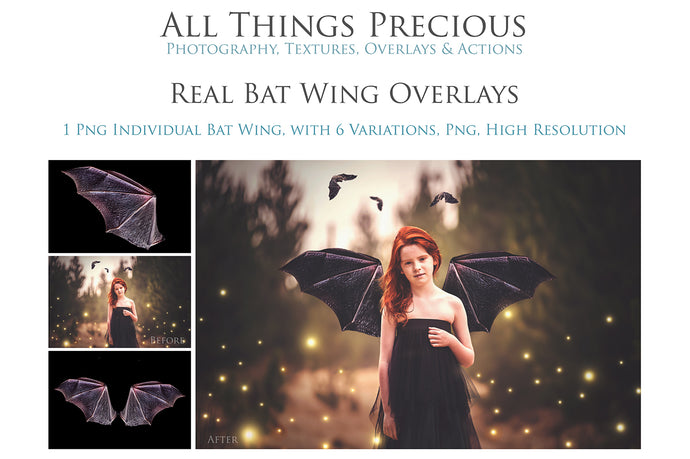 6 BAT FAIRY WING Overlays