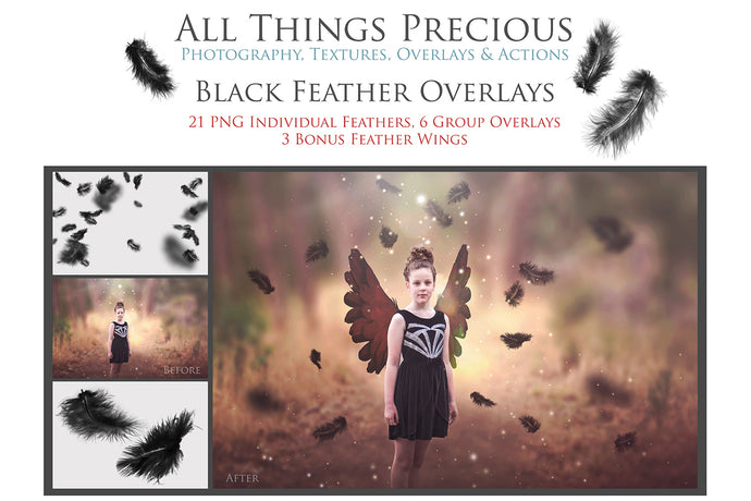BLACK FEATHERS & WING Digital Overlays