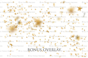 GOLD STAR Digital Overlays