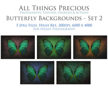 Load image into Gallery viewer, DIGITAL BACKDROP - Butterflies Set 2