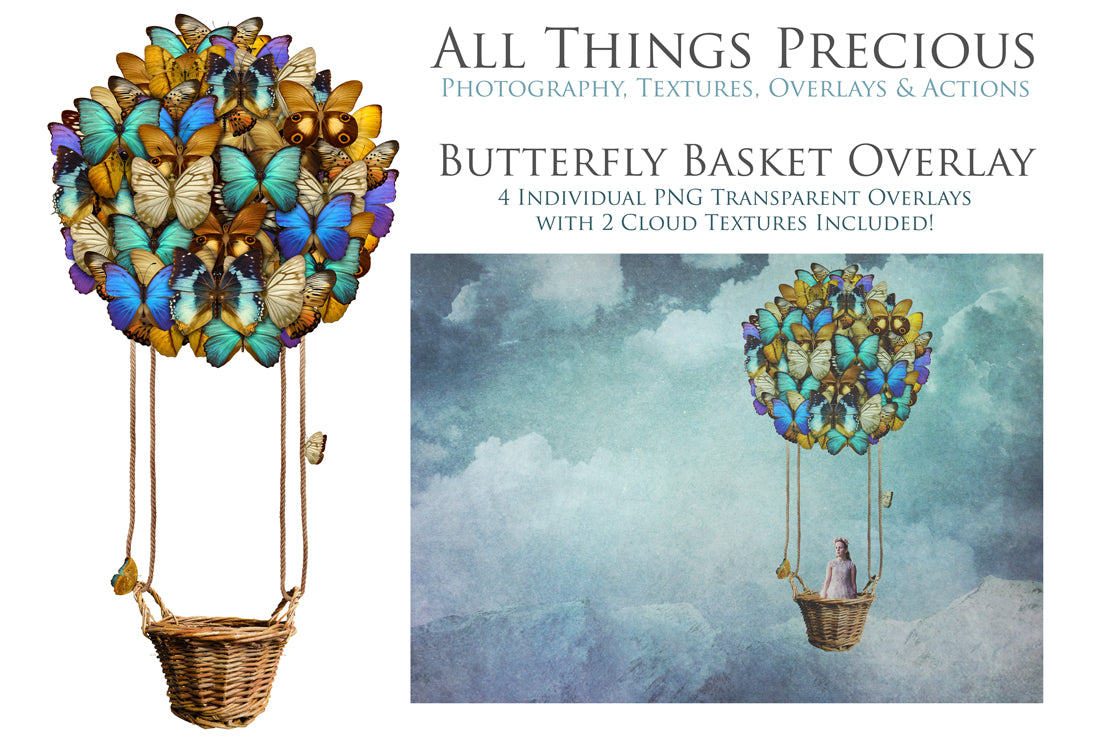 BUTTERFLY BASKET Digital Overlays Clipart