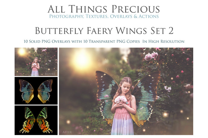 20 Png Digital BUTTERFLY FAIRY WING Overlays Set 2